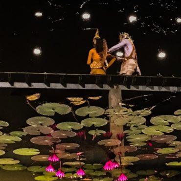 水面に映るハス(カンボジア)